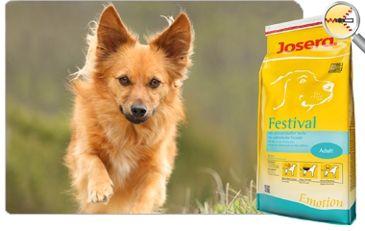 Josera festival 15 кг